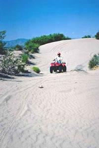 Four wheeler in the Dunes.